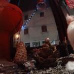 2014-12-20-Feedback-Slo-Konjice-Pazin-HR-11